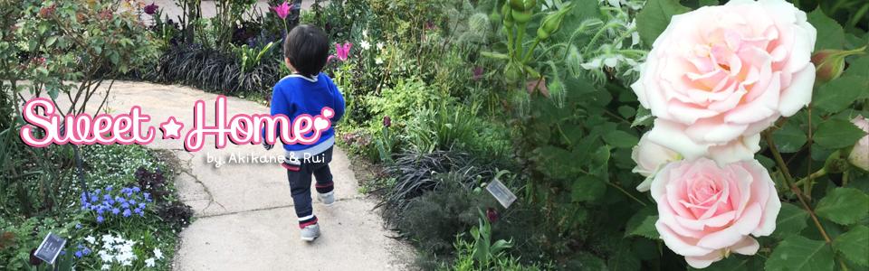 タグ: 自家菜園